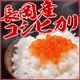 平成22年新米!新潟県長岡産コシヒカリ 30kg(10kg×2袋+5kg×2袋)