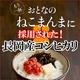 平成21年産 中村さんちの新潟県長岡産コシヒカリ白米 10kg(10kg×1袋)