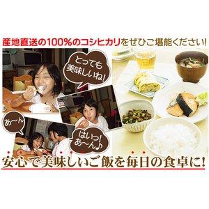新潟名物伝統の味!笹だんご 黒ゴマあん10個 + 山ごぼうの葉(つぶあん)10個 計20個セット