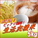 米|雑穀|シャイニング