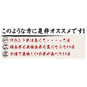 お試しに!平成28年産 新潟県長岡産コシヒカリ(未検査米)白米5kg