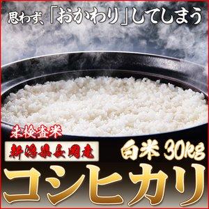 平成25年産 新潟県長岡産コシヒカリ(未検査米)白米30kg(30kg×1袋)