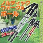 ノルディックウォーク用 ポール 軽量伸縮 2本 杖 シルバーの詳細ページへ
