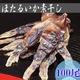 富山湾 ほたるいかの素干し 100尾 ほたライターで炙るとさらに美味い!
