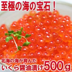 【父の日用 北海道網走産】お徳用!ぷっちぷちのいくらの醤油漬500g
