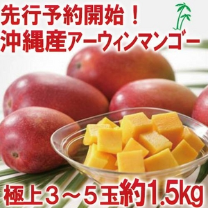 【7月15日までの予約販売 訳あり】★沖縄産 糖度13度以上★美味しい訳ありマンゴー1.5キロ(3玉〜5玉)