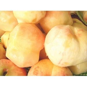 【9月17日で終了】 フルーツ王国福島の最上級極甘プレミアム桃  お口いっぱいに広がる果汁とジューシーでとろける果肉♪福島が誇る最上級極甘桃!【高糖度】 2キロ 【6〜9個】