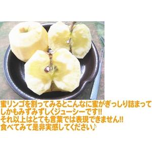 【福島県産りんご】 プレミアム蜜サンふじ 5k(18〜21玉) 【ご家庭用 小玉】