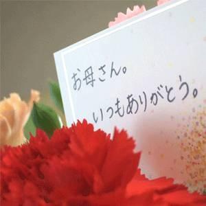 【母の日限定】メッセージカード付き さくらんぼ佐藤錦24粒と生花カーネーションのセット