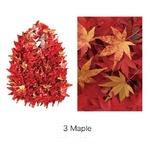 HAM−15絞りバッグ Mapleの詳細ページへ