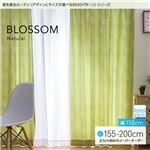 窓を飾るカーテン(デザインとサイズが選べる8000パターン)ナチュラル BLOSSOM(ブロッサム) 遮光2級 形態安定 (MZ) 幅150cm×丈175cm(2枚組) グリーン