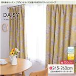 窓を飾るカーテン(デザインとサイズが選べる8000パターン)ナチュラル DAISY(デイジー) 遮光2級 形態安定 (AL) 幅100cm×丈250cm(2枚組) イエロー
