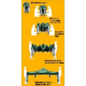 ワンタッチタープテント グリーン 【アウトドア】