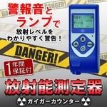 ガイガーカウンター RAY-2000A 日本語意訳説明書付 【放射能測定器】