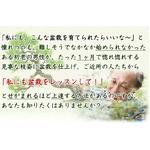【通信講座】藤田茂男の流儀 〜盆栽上達法〜[DVD&テキスト]の詳細ページへ