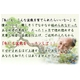 【通信講座】藤田茂男の流儀 〜盆栽上達法〜 [テキスト&DVD]