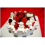【12月17日で予約終了 2010年クリスマス向け】オリジナルのクリスマスケーキが作れちゃう 手作りケーキセット