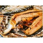 ★★見かけは悪いが、味は最高!!!★★真いわし干物【90g〜130g】 12枚