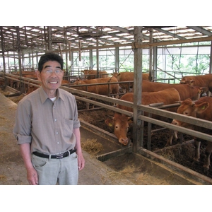 100%国産飼料肥育「阿蘇赤牛」1頭(約650kg)分の真空パック加工肉・出荷11月下旬(予約販売)熊本県阿蘇産山村・井雅信様肥育