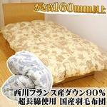 昭和西川 フランス産ダウン 90%国産超長綿羽毛布団 シングルロング ブルー