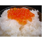 【平成22年産新米】 澤田農場の新潟県上越産ミルキークイーン玄米 20kg(5kg×4袋)