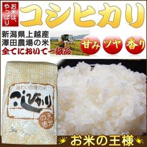 【お試しにも!平成25年産】 澤田農場の新潟県上越産コシヒカリ白米 5kg