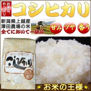 【平成25年産】 澤田農場の新潟県上越産コシヒカリ白米 30kg(5kg×6袋)