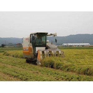 【平成27年産】 澤田農場の新潟県上越産ミルキークイーン白米 20kg(5kg×4袋)