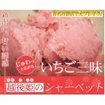斉藤いちご農園のいちごシャーベット 10個入の詳細ページへ