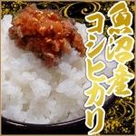 【平成22年産新米!】中村農園の魚沼産コシヒカリ白米25kg(5kg×5袋)