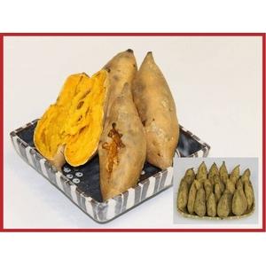 安納芋(安納黄金)5kg