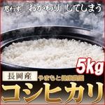 【平成22年産】 やまもと健康農園の長岡産コシヒカリ白米5kg