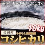 【平成22年産】 やまもと健康農園の長岡産コシヒカリ白米10kg(10kg×1袋)