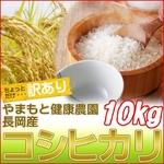 【訳あり】やまもと健康農園の新潟県長岡産コシヒカリ白米10kg(10kg×1袋)