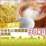 【訳あり】やまもと健康農園の新潟県長岡産コシヒカリ白米30kg(10kg×3袋)