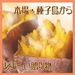 【種子島産】安納芋(あんのういも) 5kg(25個前後)