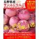 長野県産サンふじりんご自宅用5kg