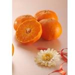 新しい柑橘 『甘平(かんぺい)』 12個入り(2kg)の詳細ページへ