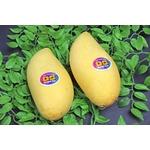 フィリピン産 マンゴー 6個入り(約1.2Kg)の詳細ページへ
