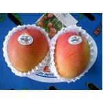 メキシコ産 ビーナスマンゴ 3個入り(約600g)の詳細ページへ