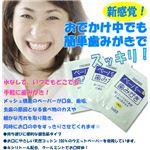 ペーパー歯みがき 30包 【防災グッズ/防災用品/断水】