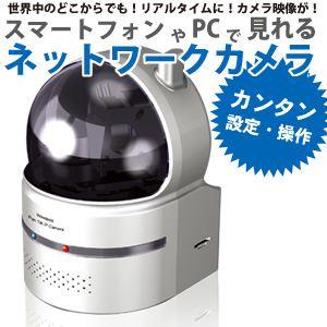 RiDATA IPネットワークカメラ RCC-9800 シルバー