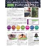 アマゾンからのスーパーフルーツ「アサイーフリーズドライパウダー」サンバゾン(TM)社製 【1本】