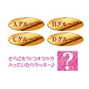 【数量限定】 2012年 レディースゴールド福袋
