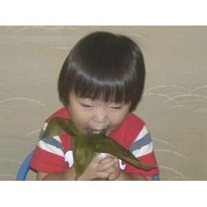 新潟名物伝統の味!笹だんご つぶあん10個 + こしあん10個 計20個セット