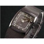 SKAGEN(スカーゲン) 腕時計 メッシュ レディース 380XSMM1
