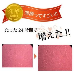 【ORifER】オリファ発酵美養液 1箱(30本入り)