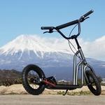 Buggycross(バギークロス) ルナメタル 2012MODEL