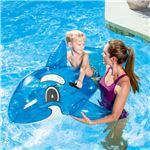 """シャチのフロート 浮き輪 62""""x37"""" Transparent Whale Riderの詳細ページへ"""