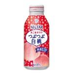 【まとめ買い】不二家ネクター つぶつぶ白桃 ボトル缶 380g 24本入り(1ケース)の詳細ページへ